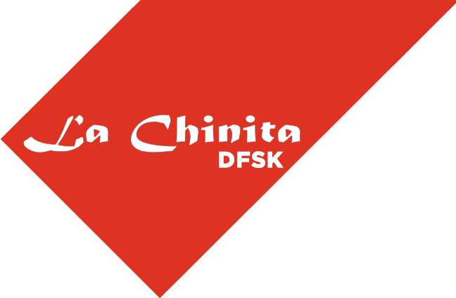 DFSK La Chinita - Logo
